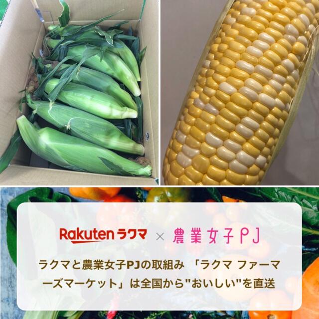 沙織様専用ページ とうもろこし 食品/飲料/酒の食品(野菜)の商品写真
