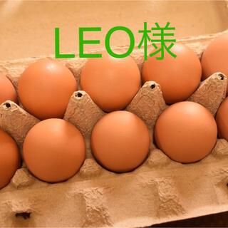 LEO様専用 平飼いたまご50個(野菜)