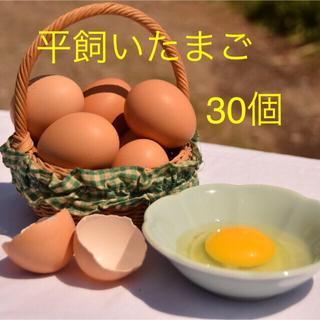 平飼いたまご 10個入り3パック 国産もみじの卵 新鮮(野菜)
