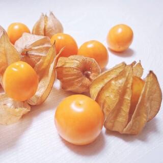 食用 ほおづき ほおずき 種  50粒以上 北海道(野菜)