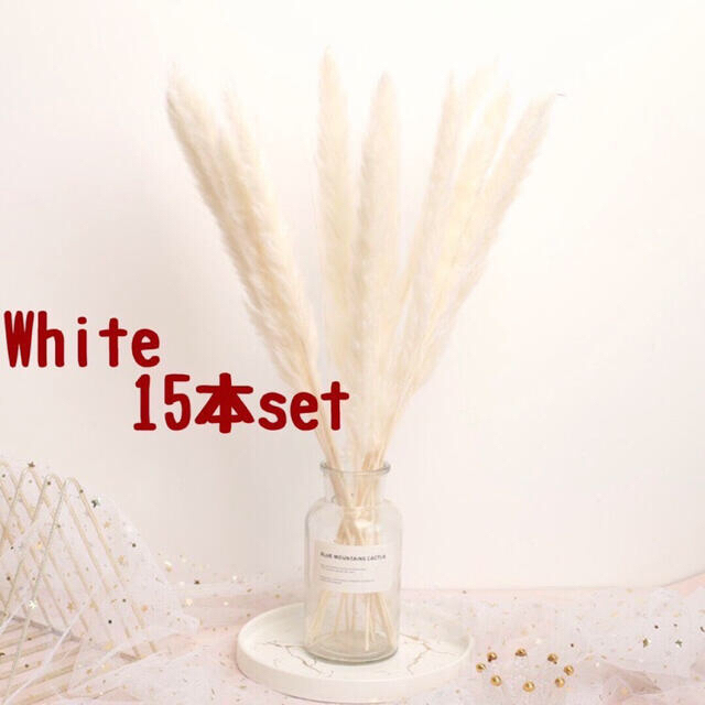 パンパスグラス ホワイト8 モカ7  15本セット ドライフラワー ハンドメイドのフラワー/ガーデン(ドライフラワー)の商品写真