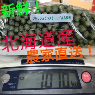 北海道産 グリーンアスパラ sサイズ 2キロ(野菜)