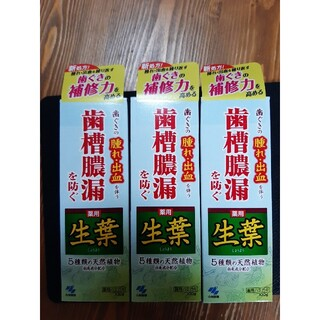 コバヤシセイヤク(小林製薬)の3箱セット生葉『100g』 小林製薬(歯磨き粉)