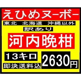 B14 えひめヌーボー 訳あり 河内晩柑 13キロ(フルーツ)