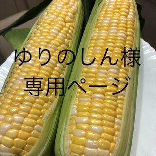 ゆりのしん様専用ページ とうもろこし(野菜)