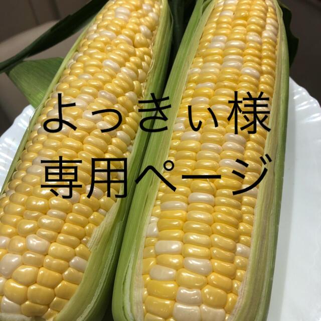 よっきぃ様専用ページ とうもろこし 食品/飲料/酒の食品(野菜)の商品写真