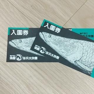 須磨海浜水族園 大人2枚(水族館)
