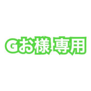 Gお様 専用(その他)