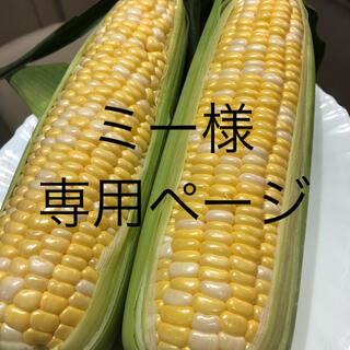 ミー様専用ページ とうもろこし(野菜)