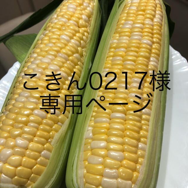 こきん0217様専用ページ とうもろこし 食品/飲料/酒の食品(野菜)の商品写真