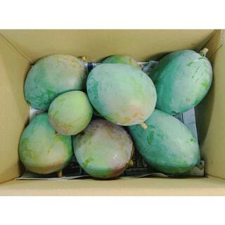 サラダやピクルスに!沖縄産キーツマンゴー(摘果果実)2kg野菜グリーンマンゴー(フルーツ)