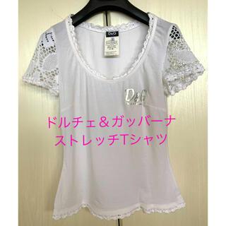 ドルチェアンドガッバーナ(DOLCE&GABBANA)のドルチェ&ガッバーナストレッチコットンレーストリミングTシャツSサイズ美品(Tシャツ(半袖/袖なし))