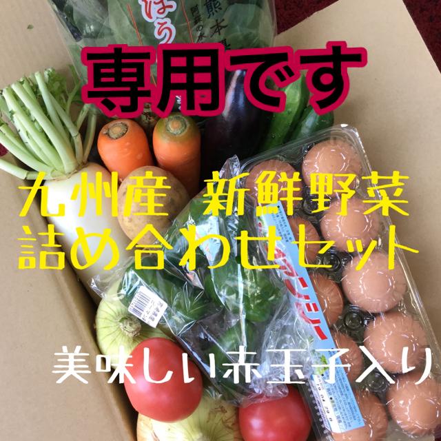 【専用です】九州産 新鮮野菜 詰め合わせセット 玉子2パック 食品/飲料/酒の食品(野菜)の商品写真