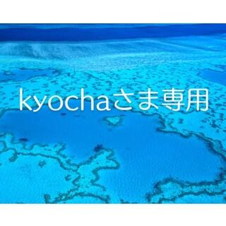 ジェイアール(JR)のJR東海 株主優待券 2枚綴 東海旅客鉄道 有効期限2022年6月30日(その他)