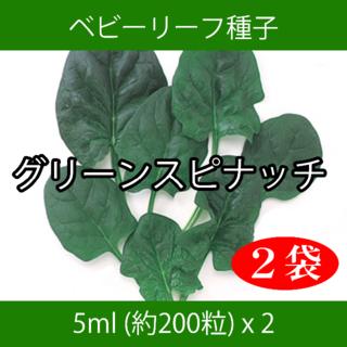 ベビーリーフ種子 B-39 グリーンスピナッチ 5ml 約200粒 x 2袋(野菜)