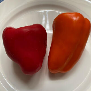 家庭菜園 オレンジピーマンの種と赤ピーマンの種(野菜)