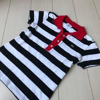 ラコステ(LACOSTE)のラコステ★ボーダーポロシャツ (ポロシャツ)