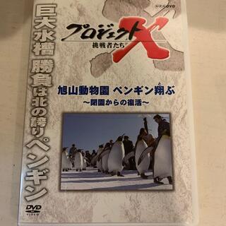 プロジェクトX 挑戦者たち旭山動物園 ペンギン翔ぶ~閉園からの復活~ DVD(趣味/実用)