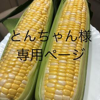 とんちゃん様専用ページ とうもろこし(野菜)