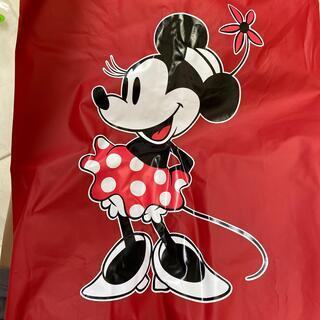 ディズニー(Disney)のTOKYO Disney resort 雨合羽 カッパ レインコート ポンチョ(レインコート)