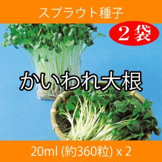 スプラウト種子 S-11 かいわれ大根 20ml 約360粒 x 2袋(野菜)
