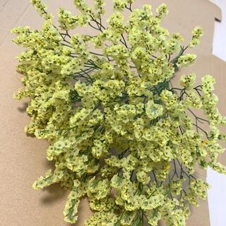ドライフラワー ハイブリッドスターチス 花材 茎付き(ドライフラワー)