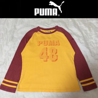 プーマ(PUMA)のPUMA☆七分袖TシャツロンTラグラン プーマアディダスFILAナイキ(Tシャツ(長袖/七分))