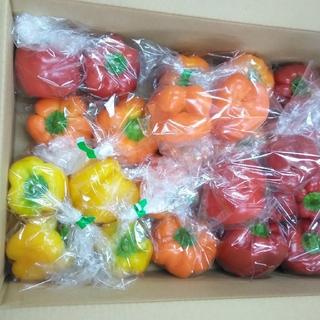 静岡県産パプリカ(小玉中心2kg )(野菜)