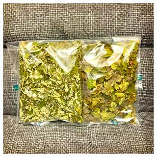 限定1名様 奈良県産無農薬よもぎ乾燥&ドクダミ乾燥セット(野菜)