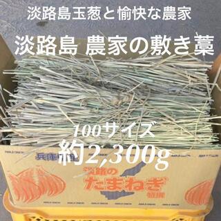 家庭菜園に!淡路島 農家の敷き藁 敷きわら 稲藁 稲わら(2,300g)春夏野菜(プランター)