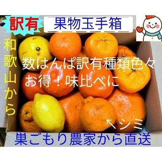 いち押し✌️訳有果物玉手箱♥巣ごもり農家=雪だるまから直送(フルーツ)