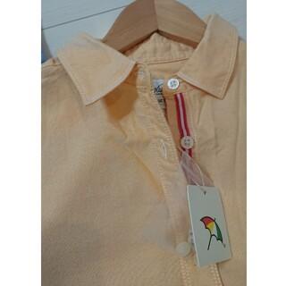 アーノルドパーマー(Arnold Palmer)のアーノルドパーマー  レディースシャツ(新品)M(シャツ/ブラウス(長袖/七分))