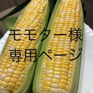 モモター様専用ページ とうもろこし(野菜)