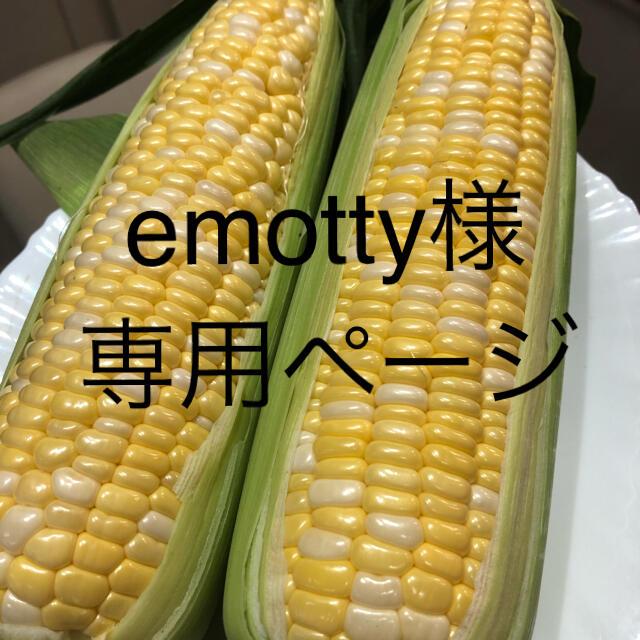 emotty様専用ページ とうもろこし 食品/飲料/酒の食品(野菜)の商品写真
