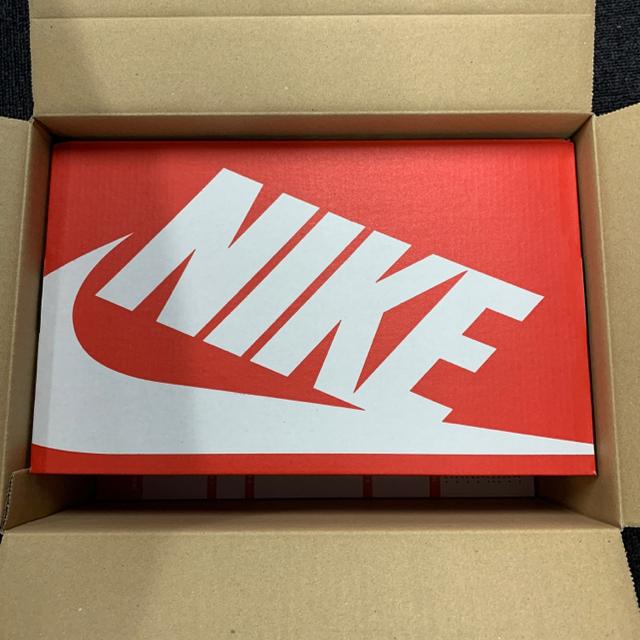 NIKE(ナイキ)のNIKE   ナイキ ダンク LOW ウィメンズ Barely Green レディースの靴/シューズ(スニーカー)の商品写真