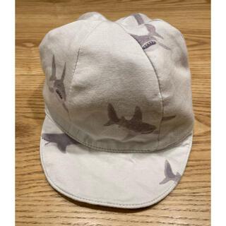 ジェラートピケ(gelato pique)のジェラートピケ gelato pique キャップ 帽子 男の子 サメ シャーク(帽子)