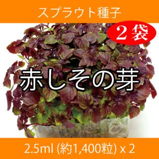 スプラウト種子 S-13 赤しその芽 2.5ml 約1,400粒 x 2袋(野菜)
