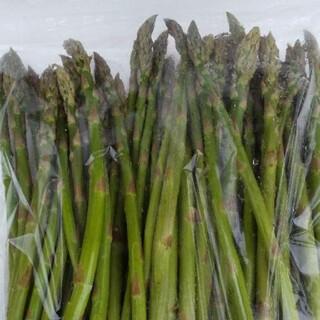 北海道産  グリーンアスパラ(野菜)