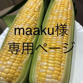 maaku様専用ページ とうもろこし(野菜)