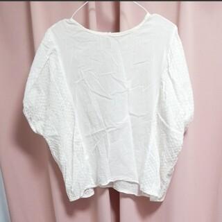 レース ブラウス 白 ホワイト(シャツ/ブラウス(半袖/袖なし))