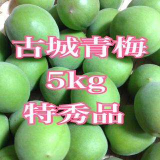 古城梅 5kg  ①(フルーツ)