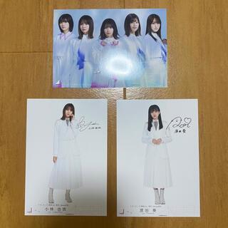 櫻坂46 ブロマイドセット(アイドルグッズ)