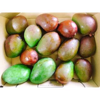 本日のみ!沖縄産マンゴー(摘果マンゴー)1.5kg野菜用!ピクルスやサラダに!(フルーツ)