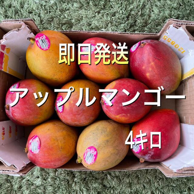 コストコ(コストコ)のアップルマンゴー 4キロ コストコマンゴー 食品/飲料/酒の食品(フルーツ)の商品写真