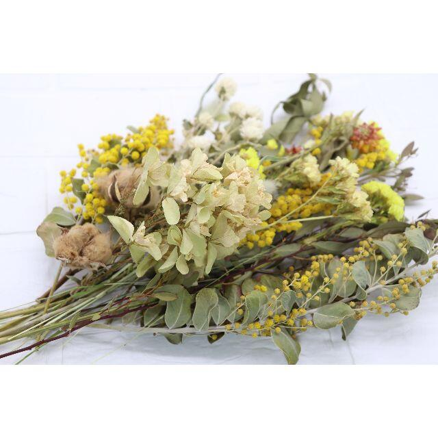 パールミモザ&黄色系スワッグ用花材(D) ハンドメイドのフラワー/ガーデン(ドライフラワー)の商品写真