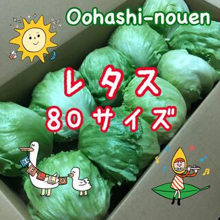 大橋農園 レタス サイズ無選別  80サイズ(野菜)