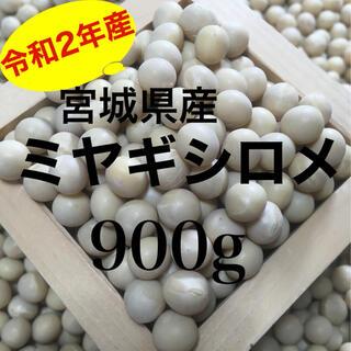 宮城県産大豆 1等級品質 ミヤギシロメ 900g(野菜)