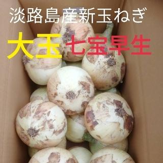 大玉△秀品3Lサイズ5Kg△淡路島新玉ねぎ たまねぎ 玉葱(野菜)