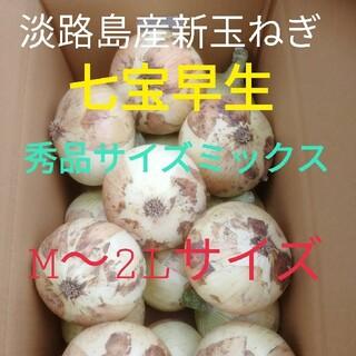 《秀品サイズミックス5Kg》淡路島新玉ねぎ たまねぎ 玉葱(野菜)