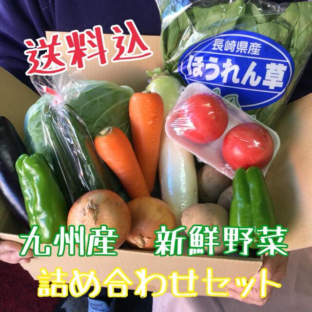 九州産 新鮮野菜を 詰め合わせセット 食品/飲料/酒の食品(野菜)の商品写真